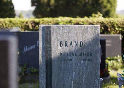 Pannoniagrün Chloritschiefer gebürstete Oberfläche mit Bronzeschriftband